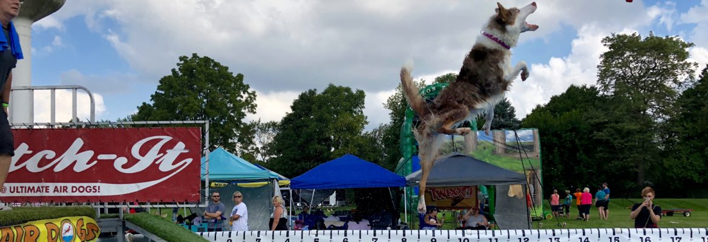 Kids Area at Stockbridge Harvest Moon Festival thrills dogs